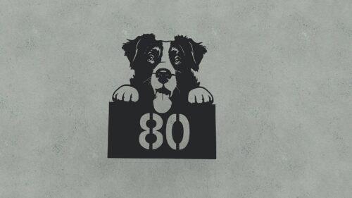kutyas_hazszamtabla